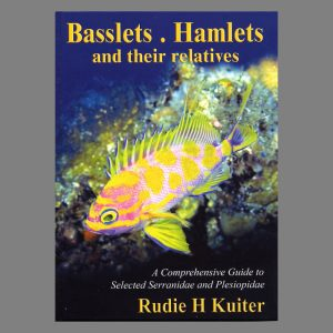 Basslet, Hamletts And Their Relatives
