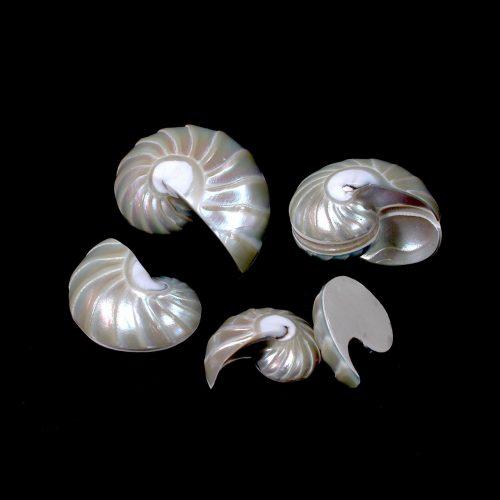 Osmena Pearl - Naut-Ribbed